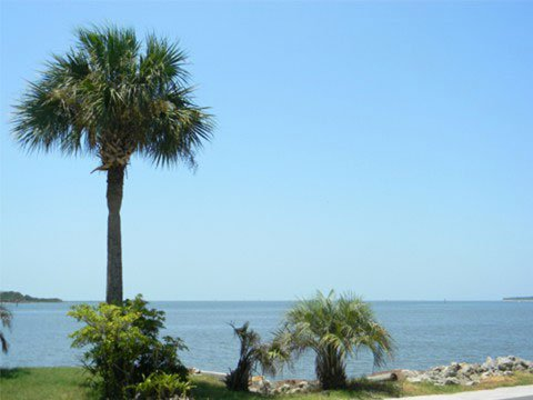 Cedar Key Island Hotel view in Panhandle