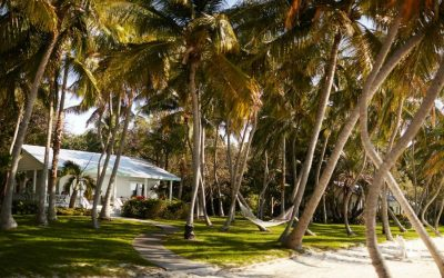 The Moorings Village, Islamorada