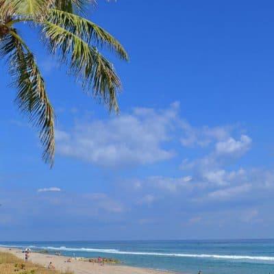 Palm Beach in the sun