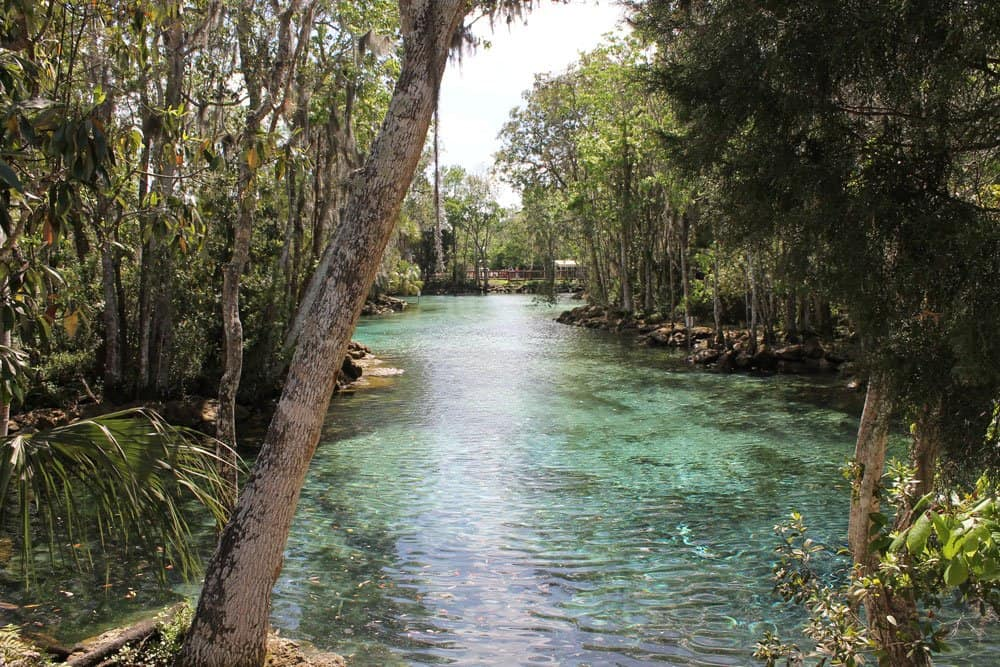 'Secret' Florida – Part One, Crystal River
