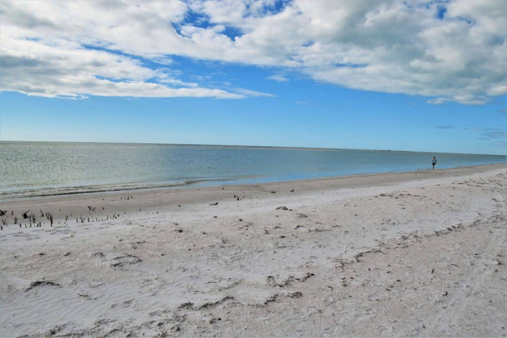 fort de soto best beaches in florida