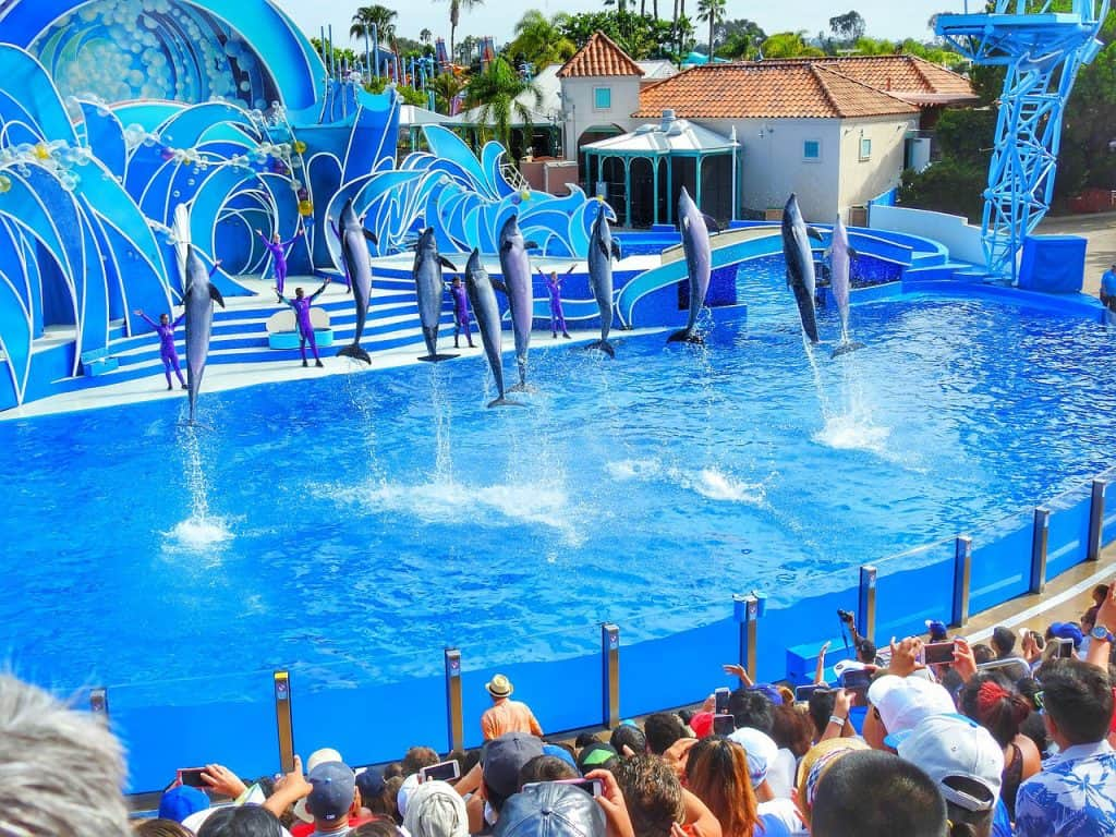 sea world 2356263 1280 theme parks in florida