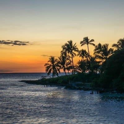 Paradise Coast Holidays