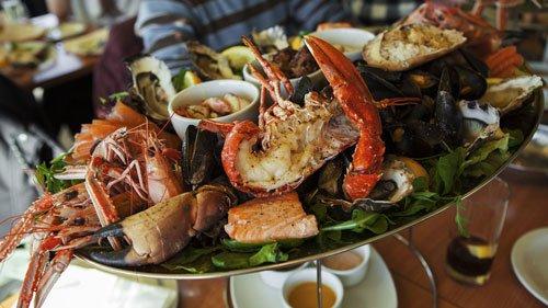 Florida restaurants for seafood