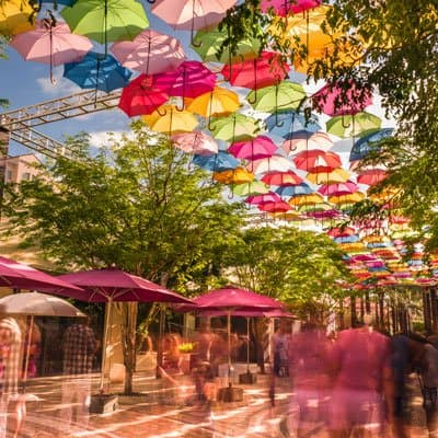 Coral Gables umbrella walk