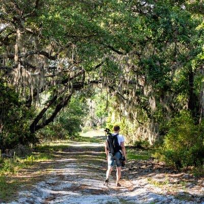 Hiking in Sarasota, Florida