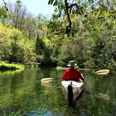 Crystal River resort adventure