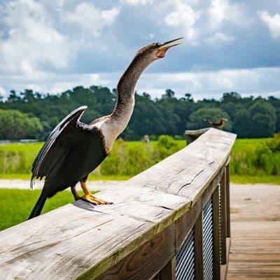 Gainesville Florida national park