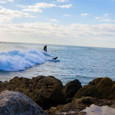 Boca Raton Surfing Boca Raton Holidays