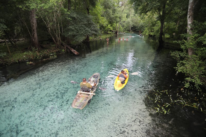Gilchrist Blue Springs State Park 2018 17 Russ Mick Offbeat side of Florida