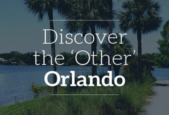 Discover the other Orlando Collection